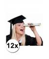 12 Luxe afstudeer/ geslaagd hoedjes
