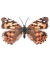 Metalen deco vlinder gevlekt  30 cm