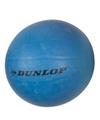 Dunlop volleyballen blauw