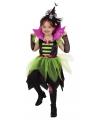 Heksen jurkje groen/zwart voor kinderen