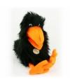 Zwarte raaf handpop