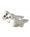 Bruiloft wit duivenpaar met ringen